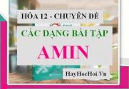 Các dạng bài tập về AMIN có lời giải - Hóa 12 chuyên đề